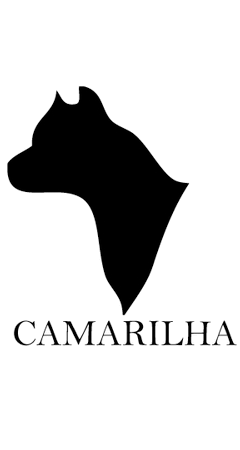 Canil Camarilha American Staffordshire Terrier